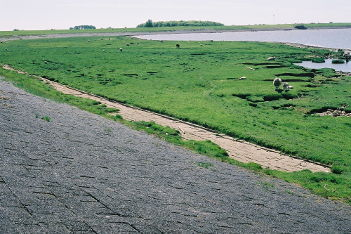Van der Meer flood risk assessment 2