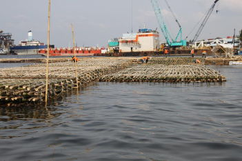 Van der Meer flood risk assessment 3